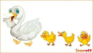 1361025391_duck_vector