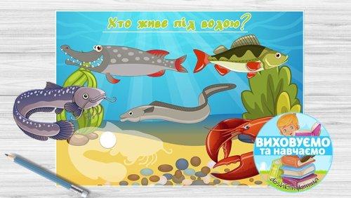 Тематичний набір «На річці» (Ігри на липучках, Ліплення, Розмальовка)
