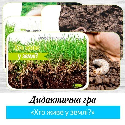 Дидактична гра «Хто живе у землі?»