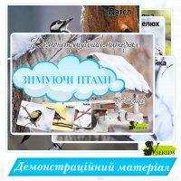 Демонстраційний матеріал «Зимуючі птахи»
