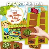 Дидактична гра «Що спочатку, а що потім? (Фази росту рослин на городі)